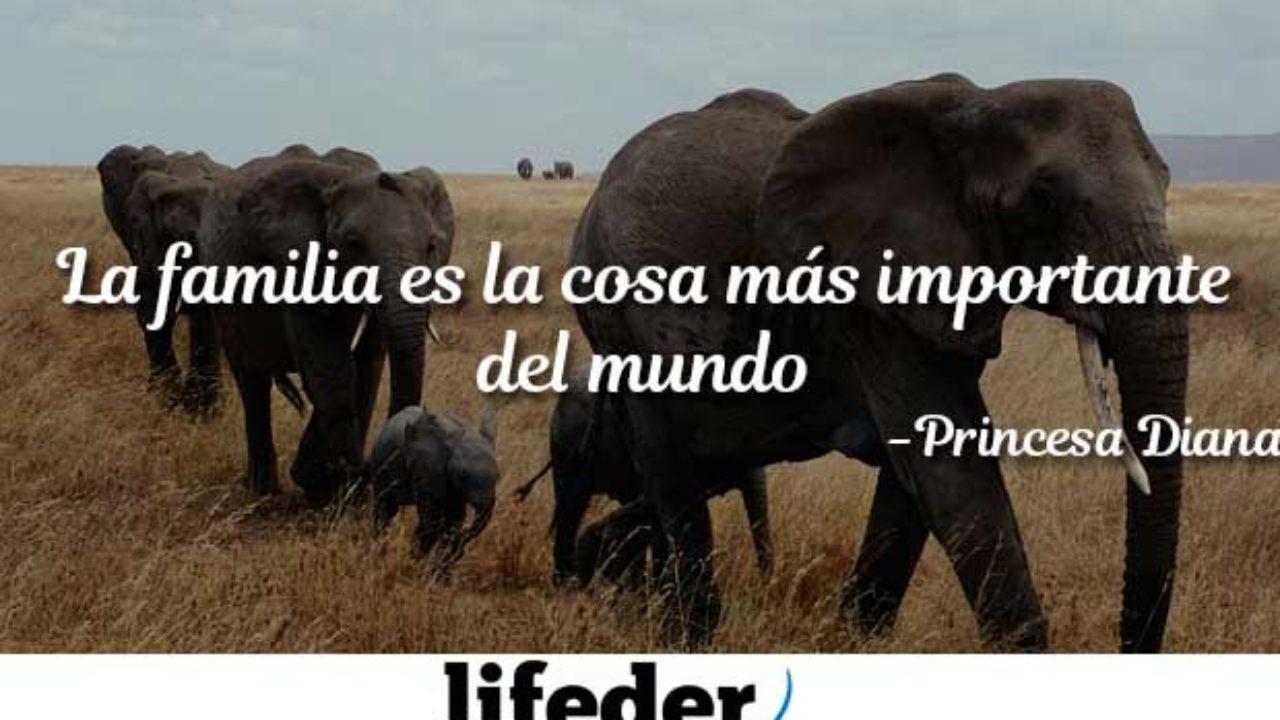 91 Frases De Familia Unida Y Feliz Lifeder