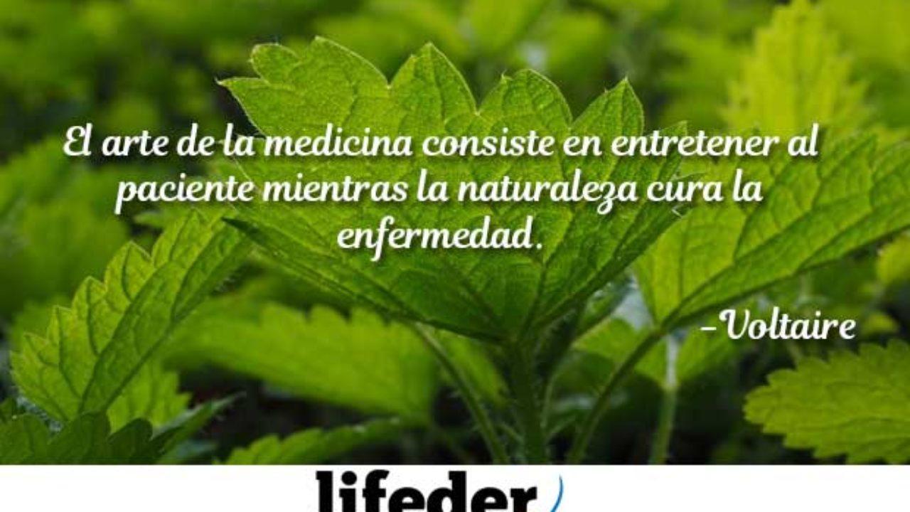 100 Frases Célebres De Medicina Para Médicos Lifeder