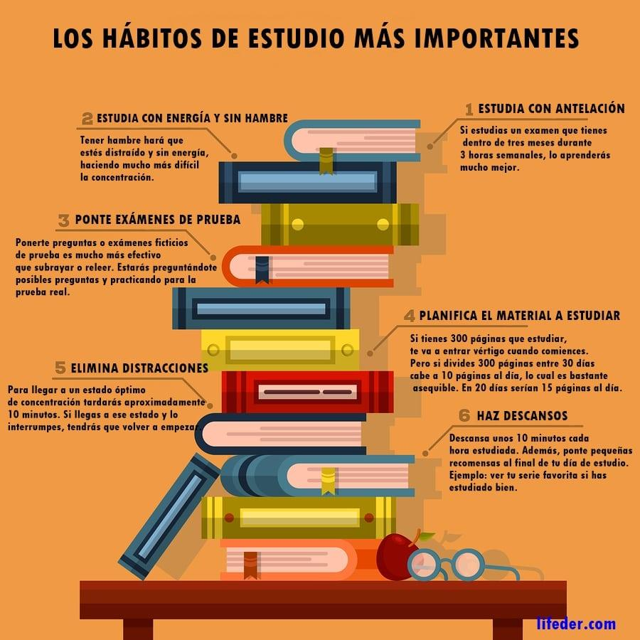 15 h bitos de estudio esenciales para los buenos estudiantes for Test trabajo ideal