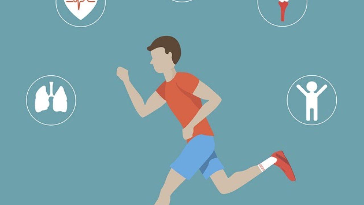 capacidad fisica flexibilidad definicion