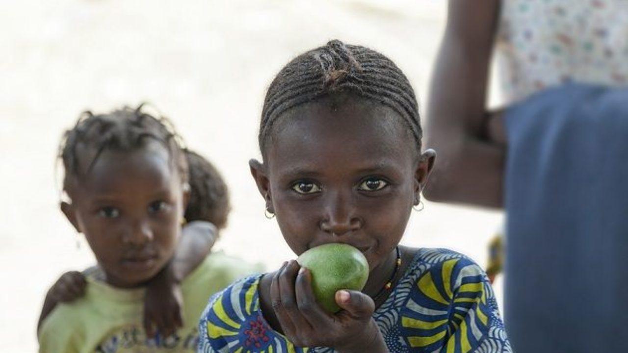 diabetes mellitus-ppt relacionada con la desnutrición