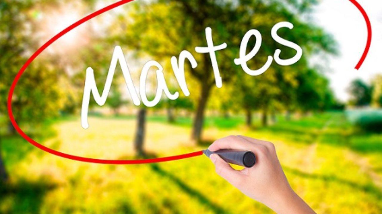 55 Bonitas Frases De Martes Lifeder
