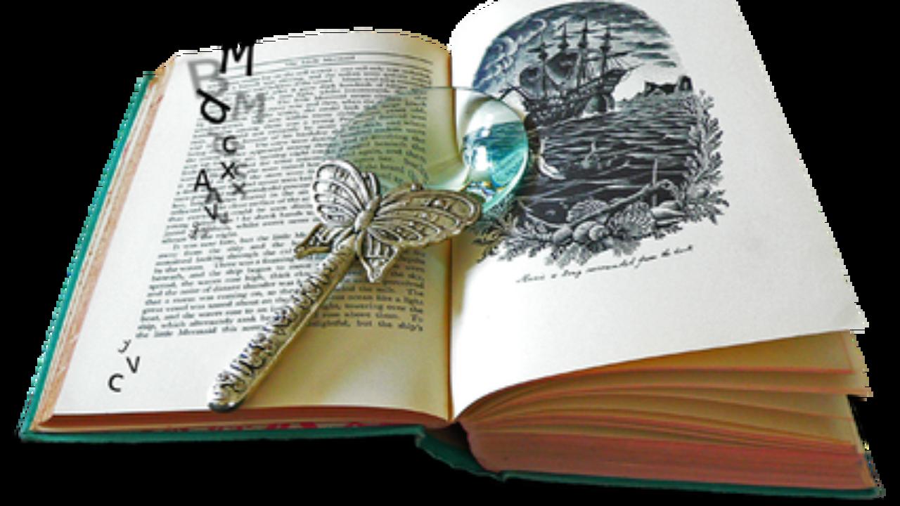 Elementos De La Novela Y Sus Características Con Ejemplos