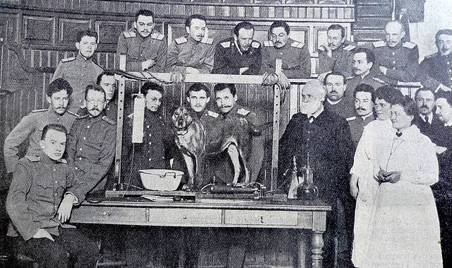 an analysis of the ivan petrovich pavlovs dog experiment Weirdexperimentscom - pavlov the russian medic ivan petrovich pavlov is in the 1970s there was a rock band that went by the name of pavlov's dog and the.