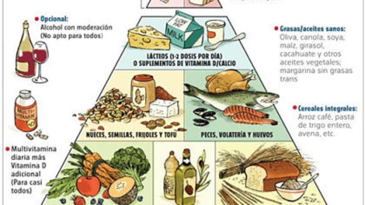 grupos alimenticios y su clasificacion