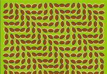 ilusión óptica olas que se mueven