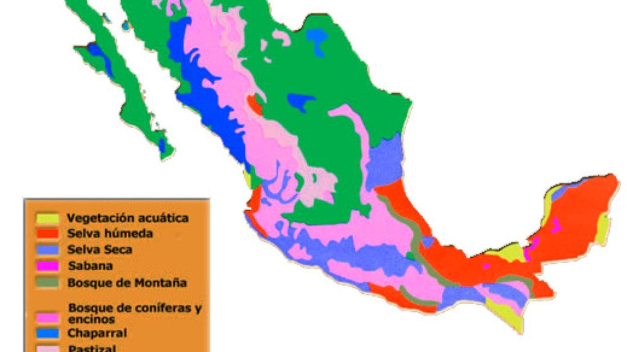 Cuáles Son Las Regiones Naturales De México Lifeder