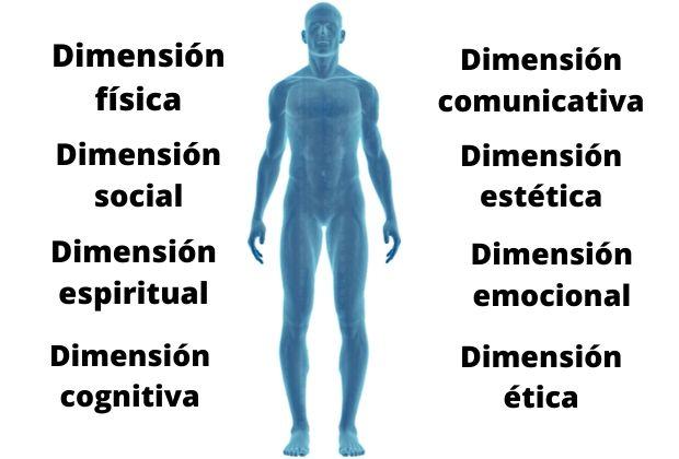 Cuáles Son Las Dimensiones Del Ser Humano Lifeder
