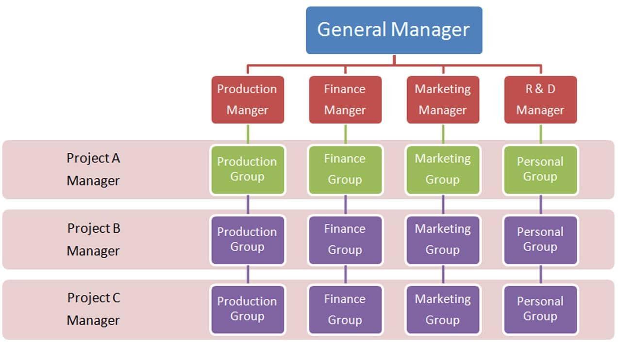 Organización Matricial Características Más Importantes