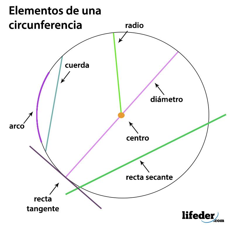Cuáles Son Los 7 Elementos De La Circunferencia