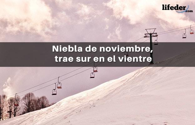 67 Bonitas Frases De Noviembre Lifeder
