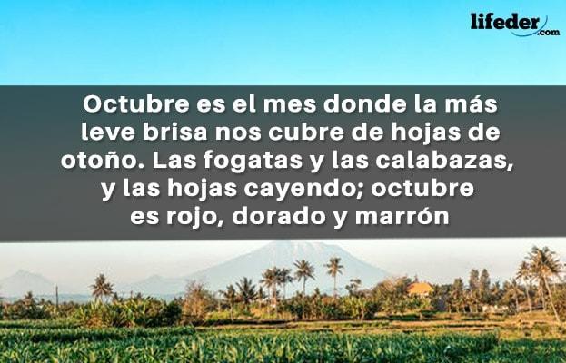 67 Bonitas Frases De Octubre Lifeder