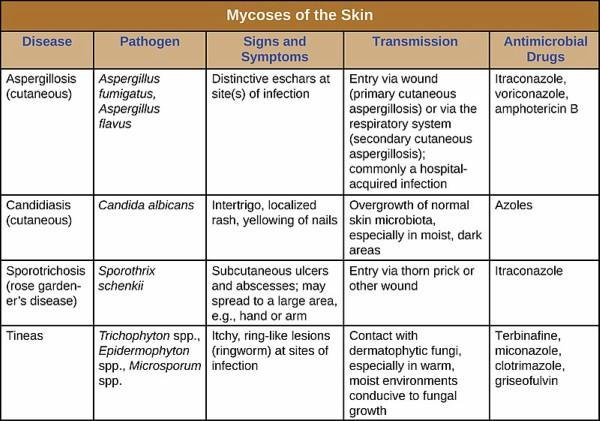 tratamiento para la micosis superficial