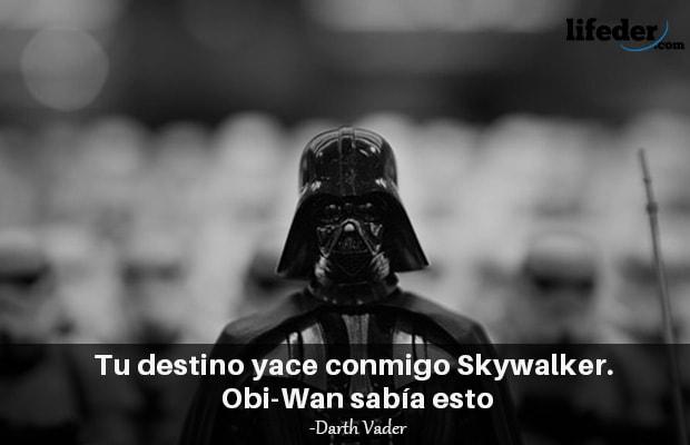 Las 101 Mejores Frases De Darth Vader Lifeder