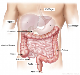 apendicitis dolor del lado izquierdo