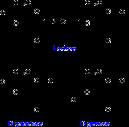 Disacáridos Características Estructura Ejemplos
