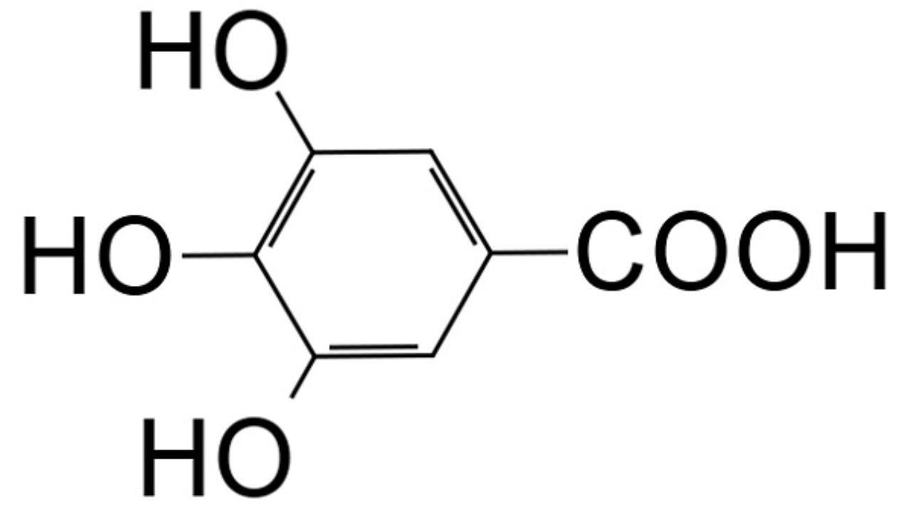ácido Gálico Estructura Propiedades Obtención Usos Lifeder