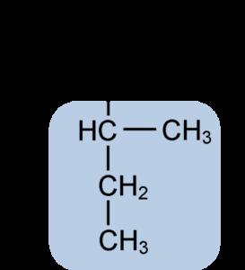alanina funcion y origen