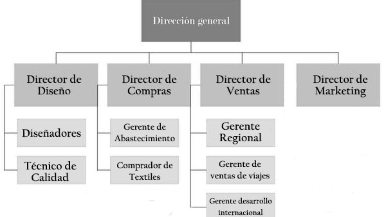 Organigrama De Una Empresa De Ropa Estructura Y Funciones