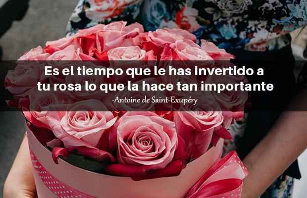 Las 110 Mejores Frases De Rosas Muy Románticas Lifeder