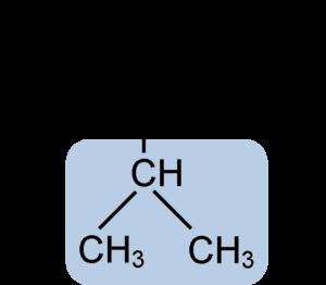alimentos fuente de aminoacidos de dependencia ramificada