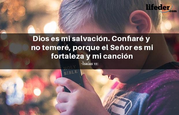 100 Citas Bíblicas De Amor Perdón Fe Esperanza Y Más