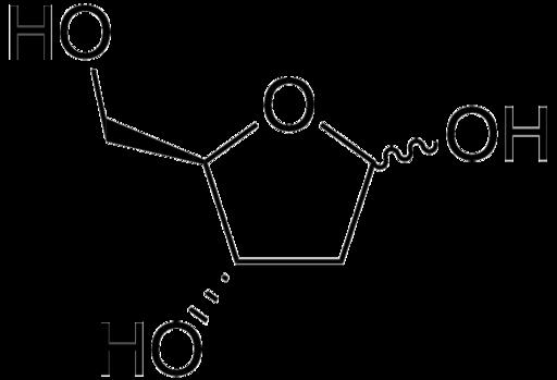 Desoxirribosa Estructura Funciones Y Biosíntesis Lifeder