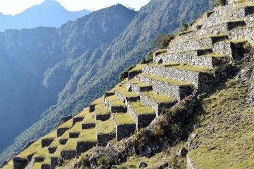 Economía Inca Organización Bases Y Actividades Del Imperio
