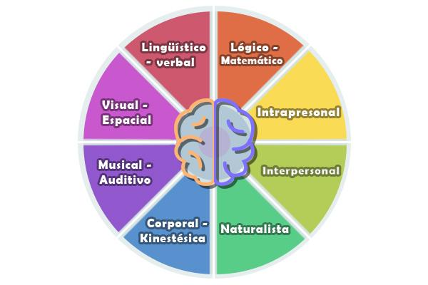 Inteligencia Naturalista Características Ejemplos Y Actividades